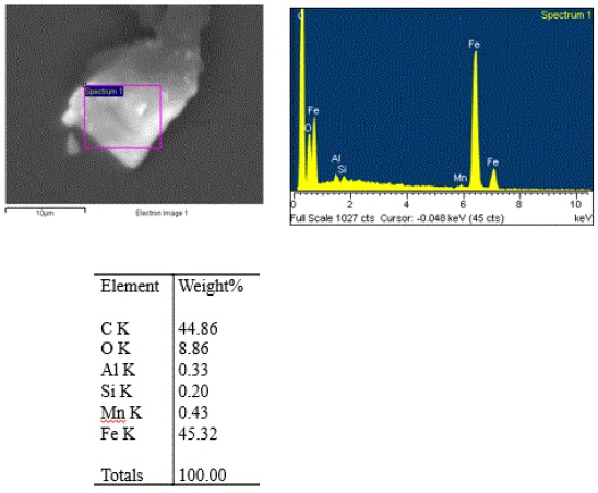 Figure 4. SEM image and EDS data obtained from the dark speck isolated from the dough.