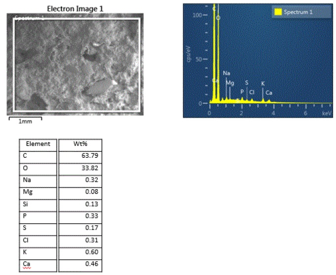 Figure 14. SEM/EDS data showing the complex elemental mixture from the dry dog food pellet.
