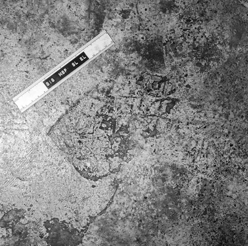 Figure 2A. A rather typical footwear impression found at crime scenes.
