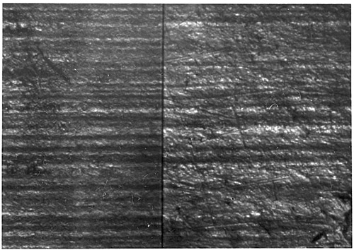 Figure 3:Matching striae of broken fingernails.