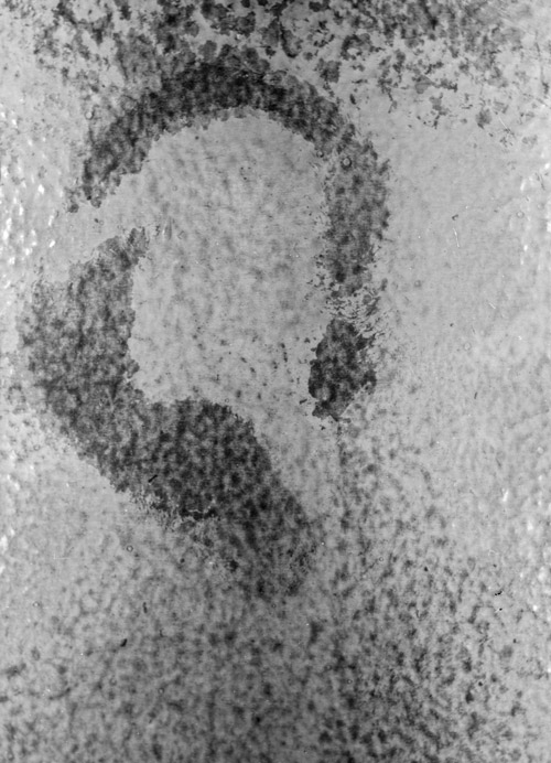Figure 5B. Close-up view of ear print found on wall at crime scene.