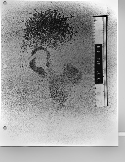 Figure 5B. Ear print found on wall at crime scene.