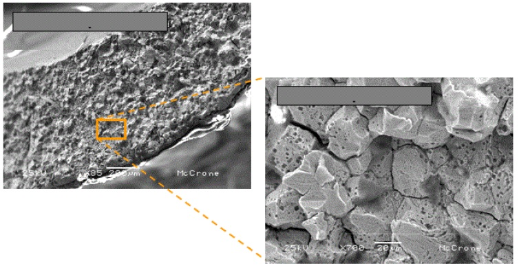 Figure 5. Secondary electron SEM images of the filling tube fracture face showing severe intergranular corrosion attack.