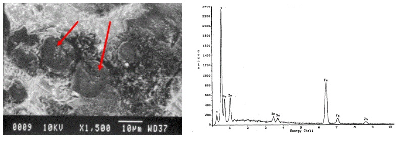 Figure 11. Secondary electron SEM image of the spherulite-like materials (arrows) and the corresponding EDS spectrum showing elevated iron and oxygen. Note that the zinc is from a zinc oxide as part of the internal coating formulation.