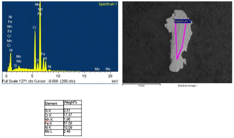 Figure 13. Representative SEM/EDS analysis data from the 19 metal particles recovered from the powder seasoning.