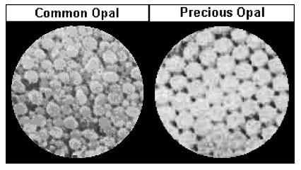 Opal IGS comparison