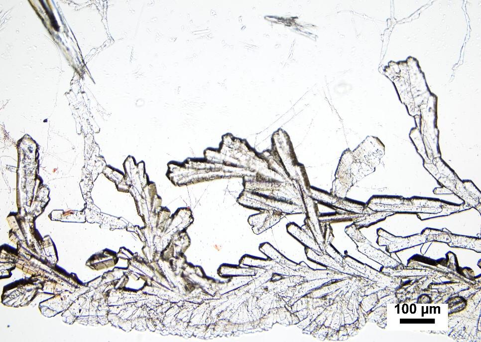 Potassium phosphate monobasic crystals