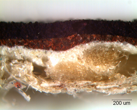 paint sample cross section under light microscope