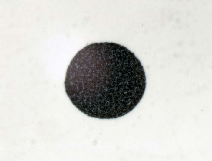 Scale - 1 mm dot, 25X magnification.