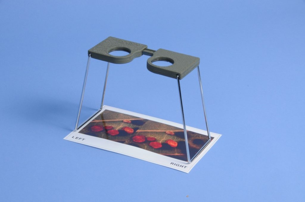 3-D photomacrography