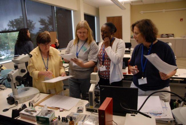 teachers microscopy camp