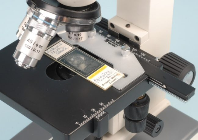 Motic microscope with attachable X-Y mechanical stage.
