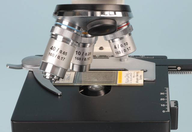 adjusting the height of a substage condenser on a Boreal monocular student microscope