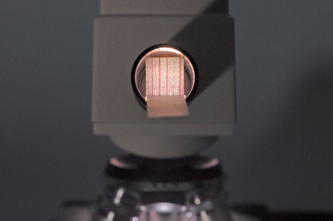 find the location of the microscope's intermediate image.