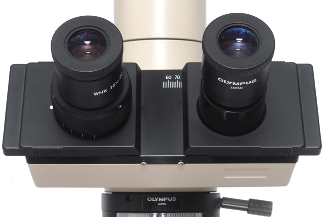 a binocular head with automatic tube length compensation