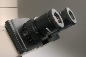 a binocular head with eyetubes pushed apart.