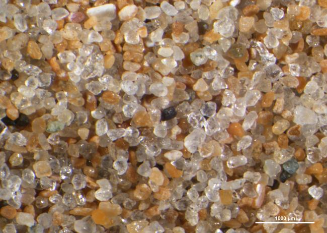 Normandy Beach sand, France, 25X.